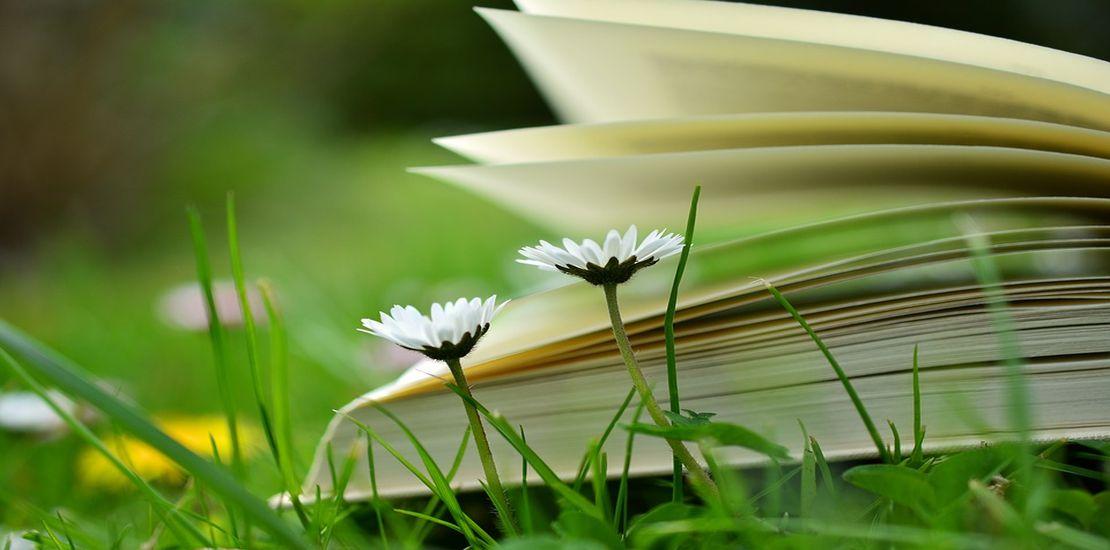 Tavaszi könyvvásár