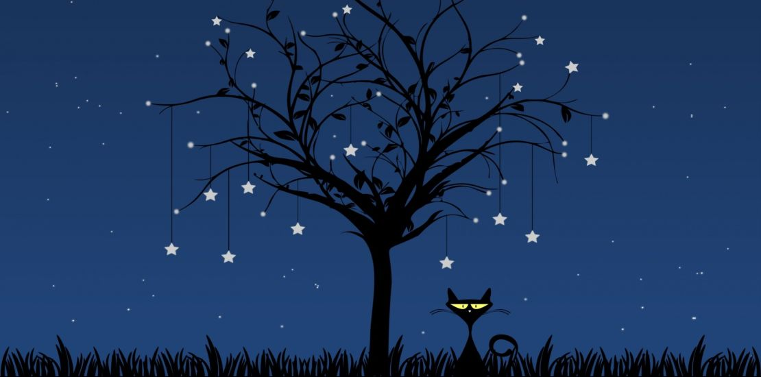 Háló-zsákba-macska